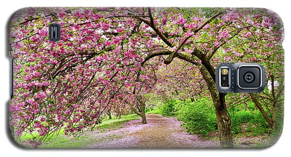 Central Park Cherry Blossoms Galaxy S5 Case