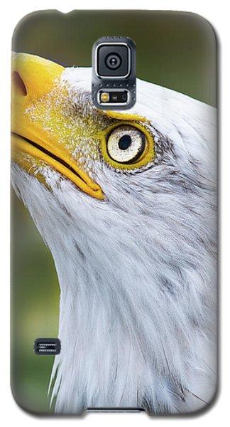 Check It Out Galaxy S5 Case