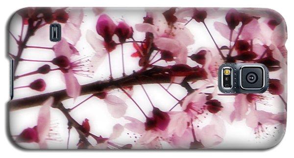 Cherry Triptych Center Panel Galaxy S5 Case