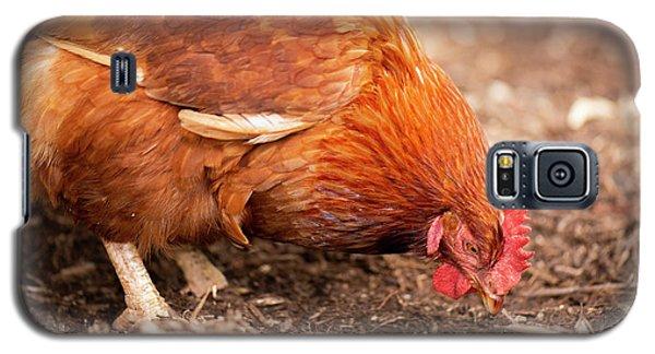 Chicken On The Farm Galaxy S5 Case