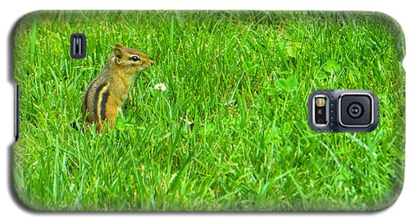Chipmunk And The Flower Galaxy S5 Case