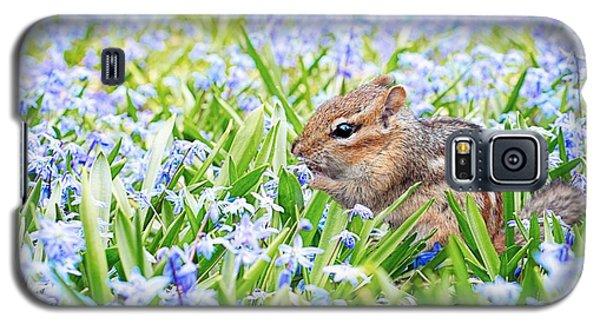 Chipmunk On Flowers Galaxy S5 Case
