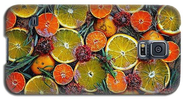 Citrus Time Galaxy S5 Case