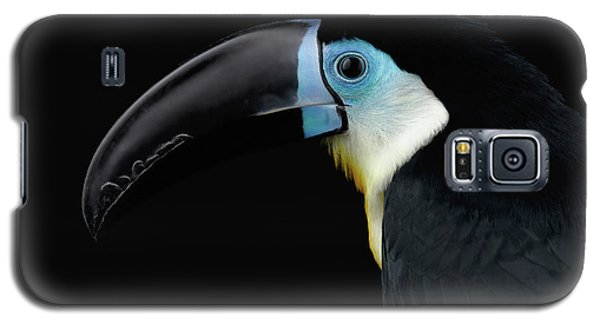 Close-up Channel-billed Toucan, Ramphastos Vitellinus, Isolated On Black Galaxy S5 Case