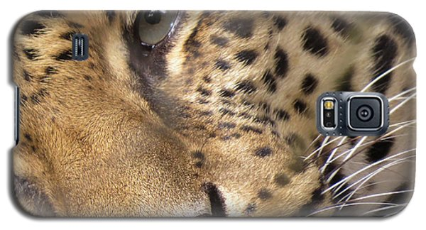 Close-up Galaxy S5 Case