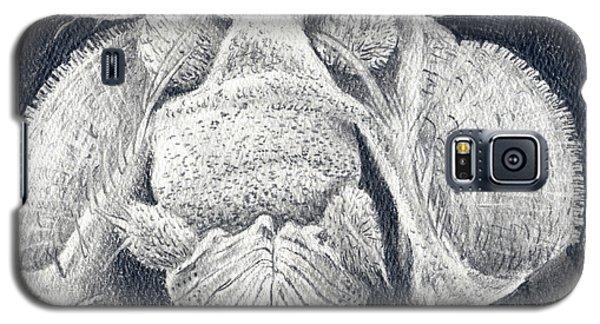 Close-up Portrait Galaxy S5 Case
