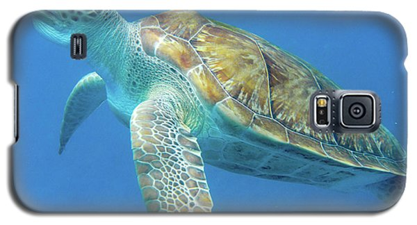 Close Up Sea Turtle Galaxy S5 Case