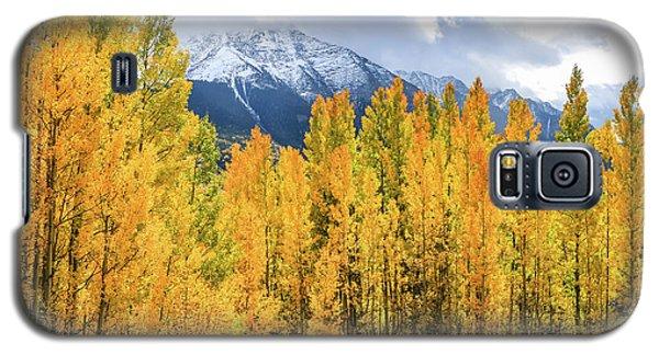 Colorado Aspens And Mountains 1 Galaxy S5 Case