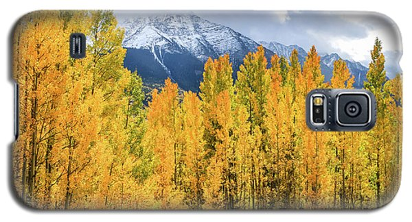Colorado Aspens And Mountains 1 Galaxy S5 Case
