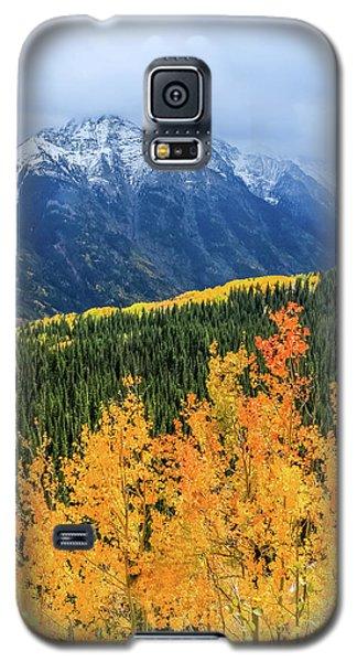 Colorado Aspens And Mountains 4 Galaxy S5 Case