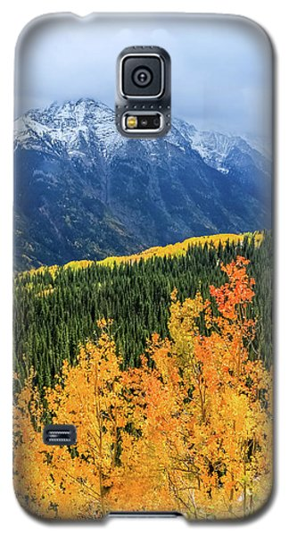 Colorado Aspens And Mountains 4 Galaxy S5 Case