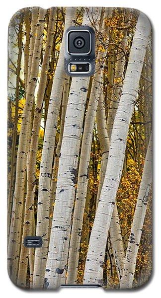 Colorado Aspens Galaxy S5 Case