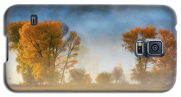 Colorado Autumn Fog Galaxy S5 Case