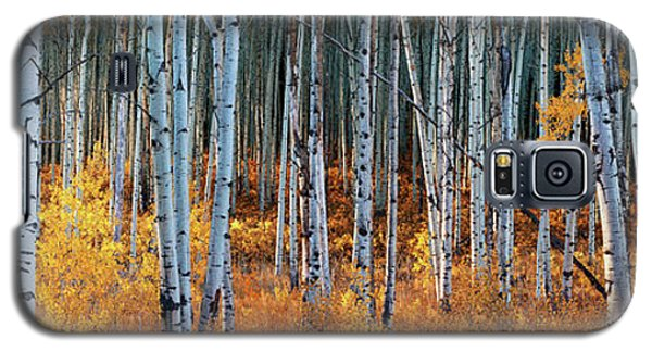 Colorado Autumn Wonder Panorama Galaxy S5 Case