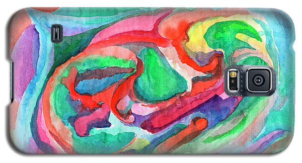 Colorful Abstraction Galaxy S5 Case