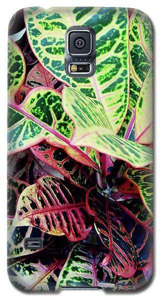Colorful - Croton - Plant Galaxy S5 Case