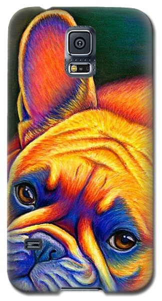 Colorful French Bulldog Galaxy S5 Case