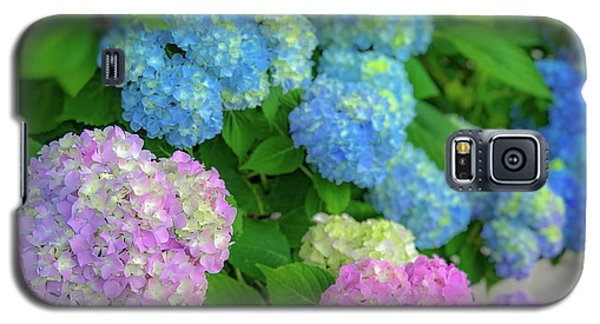 Colorful Hydrangeas Galaxy S5 Case