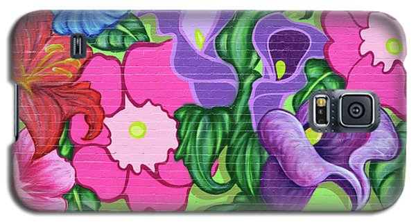 Colorful Mural Galaxy S5 Case