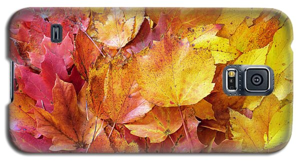 Colors Of Fall - Red To Yellow Galaxy S5 Case