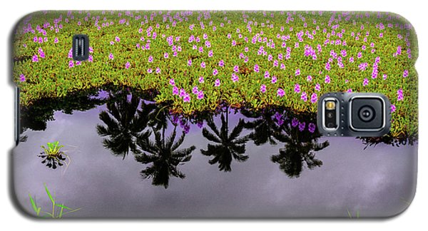 Colors On The Water Galaxy S5 Case