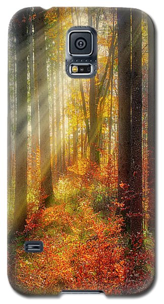 Colours Of Nature 02 Galaxy S5 Case