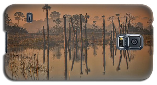 Cool Day At Viera Wetlands Galaxy S5 Case