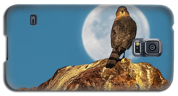Coopers Hawk With Moon Galaxy S5 Case