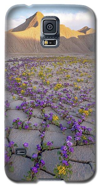 Courage Galaxy S5 Case