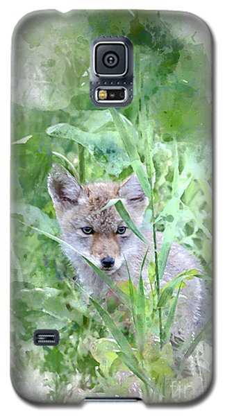 Coyote Pup Galaxy S5 Case