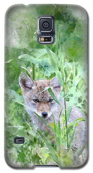 Coyote Pup Galaxy S5 Case