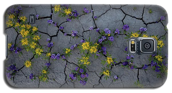 Cracked Blossoms Galaxy S5 Case