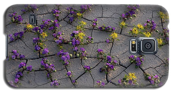 Cracked Blossoms II Galaxy S5 Case