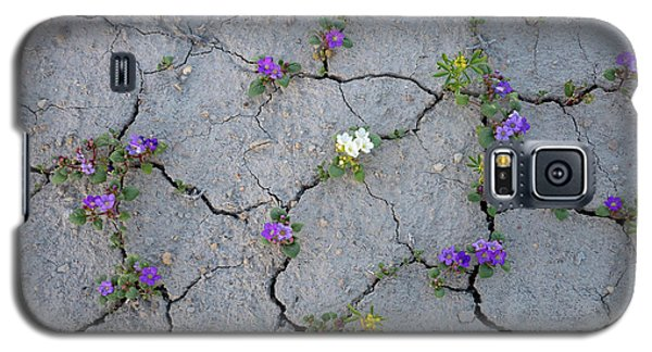 Cracked Galaxy S5 Case