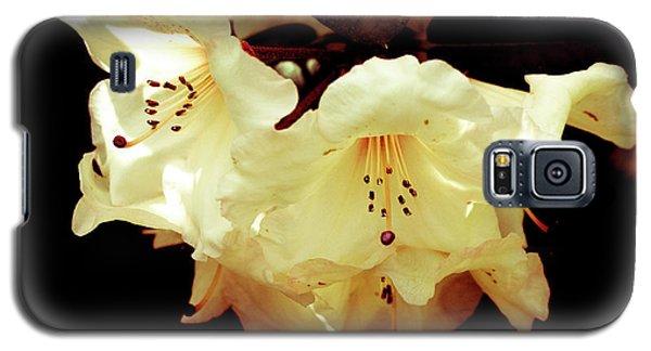 Creamy Rhododendron Galaxy S5 Case