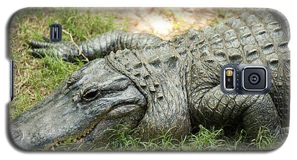 Crocodile Outside Galaxy S5 Case