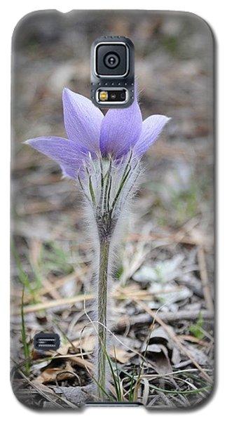 Crocus Detail Galaxy S5 Case