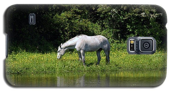 Cumbria. Ulverston. Horse By The Canal Galaxy S5 Case