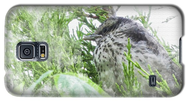 Cute Little Bird On Tree Galaxy S5 Case