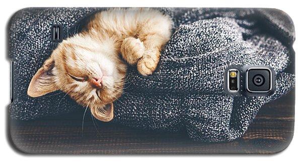 Cold Galaxy S5 Case - Cute Little Ginger Kitten Is Sleeping by Alena Ozerova