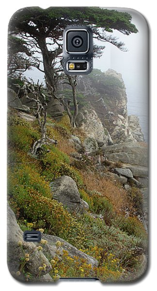 Cypress Cliff Galaxy S5 Case
