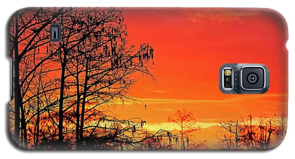 Cypress Swamp Sunset 2 Galaxy S5 Case