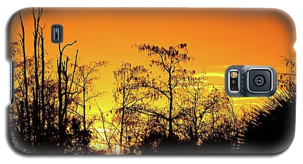Cypress Swamp Sunset 3 Galaxy S5 Case