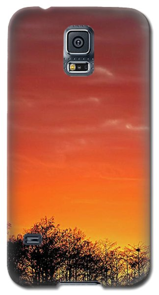 Cypress Swamp Sunset 4 Galaxy S5 Case