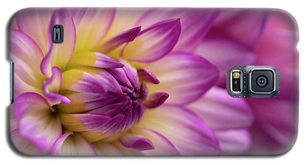 Dahlia II Galaxy S5 Case