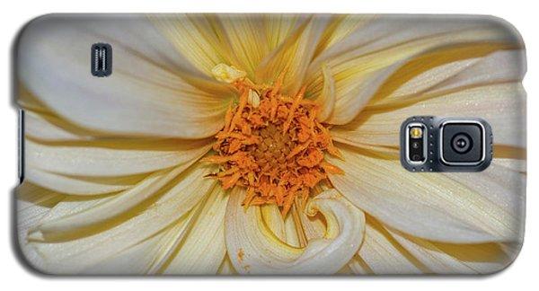 Dahlia Summertime Beauty Galaxy S5 Case