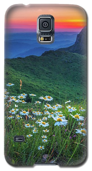 Daisies In The Mountain Galaxy S5 Case