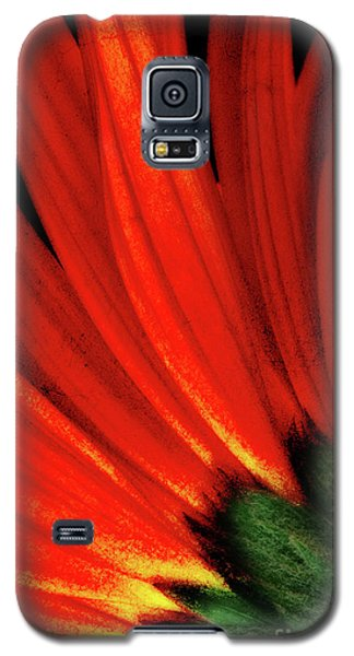Daisy Aflame Galaxy S5 Case