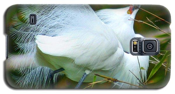 Dancing Egret Galaxy S5 Case
