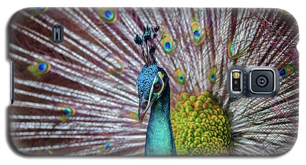 Dancing Indian Peacock  Galaxy S5 Case